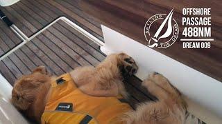 Sailing The Dream | #009 | Offshore Passage 488NM