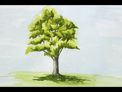 Coloriage Arbre Dolive.Peindre Un Arbre A L Aquarelle Facilement Youtube