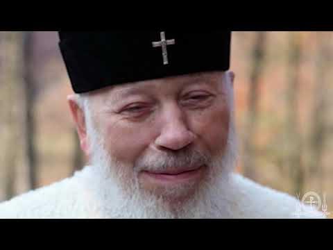 Памяти Блаженнейшего митрополита Владимира. Воспоминания о почившем Предстоятеле.