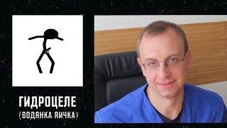 ГИДРОЦЕЛЕ или ВОДЯНКА ЯИЧКА. Уролог, андролог, сексопатолог Алексей Корниенко.