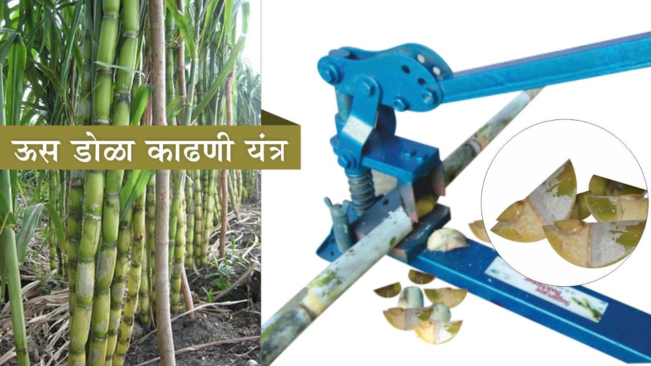 sugarcane bud chipper youtube. Black Bedroom Furniture Sets. Home Design Ideas