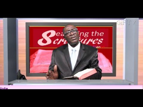 GiF TV 24/7