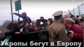 видео Кидалово www.autotuning-vw.ru