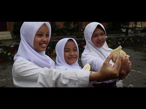 Jawa Pos Belah Durian Episode 24: Budidaya Durian Anak-Anak Trawas