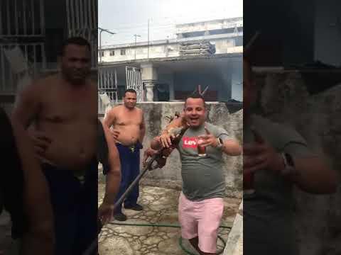 Video de Báguanos