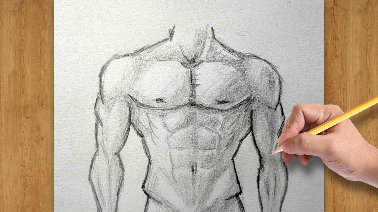 How To Draw Male Body Torso Easy Drawing For Beginners Youtube