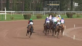 Vidéo de la course PMU GRAND PRIX BORDEAUX METROPOLE