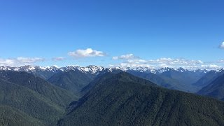 Hurricane Ridge in the Olympic National Park. July, 2016.