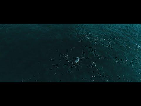 SURF SCUBA DIVE - CABO, MEXICO