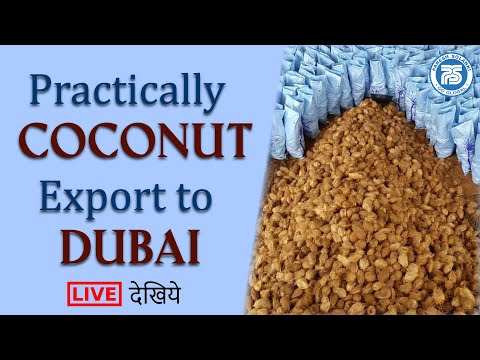 Coconut Export to DUBAI By Our Student | Learn Export Import Practically