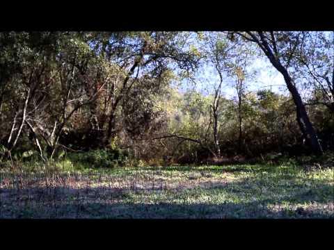 Flora Linda 120 Acres in Santa Cruz County. Electricity, Water, Lake Simas and Rich Soil