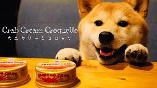 料理音#カニクリームコロッケ#柴犬 柴犬ぷんちゃんのおうちへようこそ。 犬用おやつに調味料は一切使用しておりません。 ぷんちゃんはお煎...