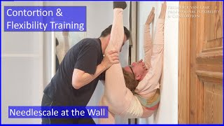 55 Flexyart Contortion Training: Using the Wall  - Also for Yoga, Pole, Ballet, Dance People
