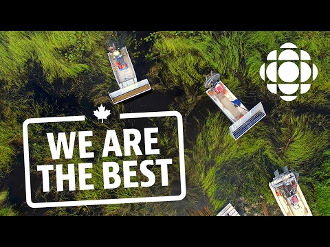 How some of the world's finest wild rice is grown and harvested | We Are The Best | CBC