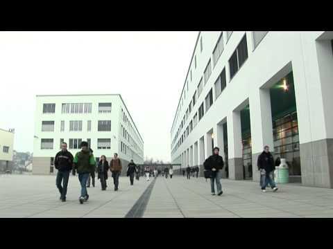 Les étudiants EPFL nous racontent leurs études (trailer)