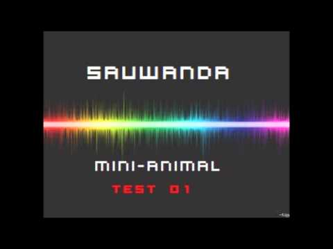 sauwanda mini-animal test 01