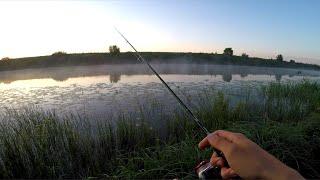 БЕЗОТКАЗНАЯ оснастка на ОКУНЯ! Как наловить МЕШОК рыбы!? / Рыбалка