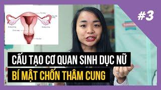 #3 Cấu tạo cơ quan sinh dục nữ | Vlog GDGT | Nga Sinh