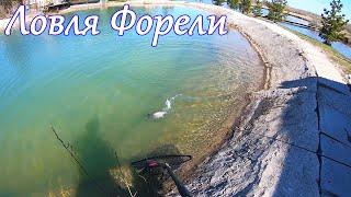 Знакомство с ФОРЕЛЬЮ! Рыбалка на спиннинг, Ловля на платнике в Мае 2020