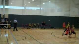 ant blunt 12u basketball 2013