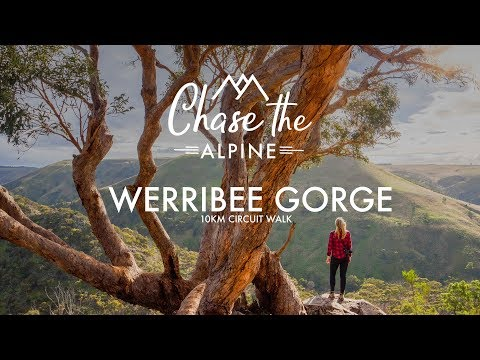 Werribee Gorge, Melbourne VIC |  Hiking the Circuit Walk