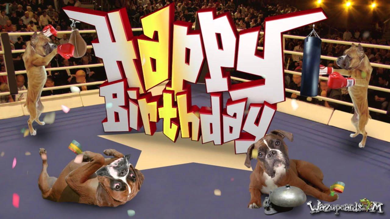 Happy Birthday Boxer Dog Youtube