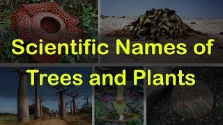 Biology question