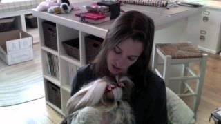 Winnie's Puppyhood: Life at the Breeder's, 0-10 Weeks