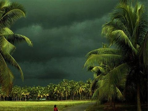 Monsoon Likely in Next 48 Hours, IMD Says