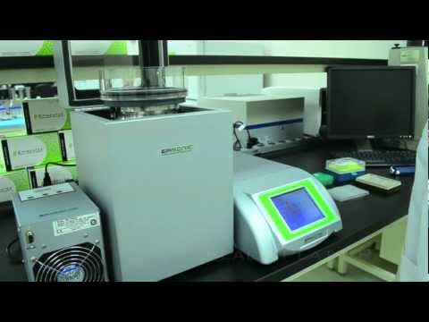 High Throughput Sonication With the EpiSonic 1100 for DNA Shearing and Chromatin Shearing