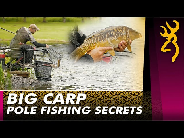 Big Carp on the Pole : Next Level Match Fishing 2021
