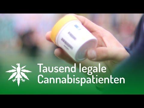 tausend-legale-cannabispatienten- -dhv-news-#106