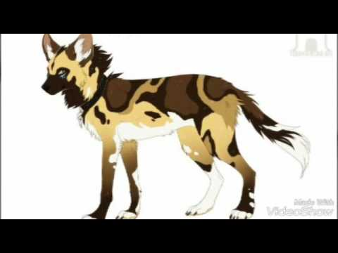 Картинки аниме волков-собак