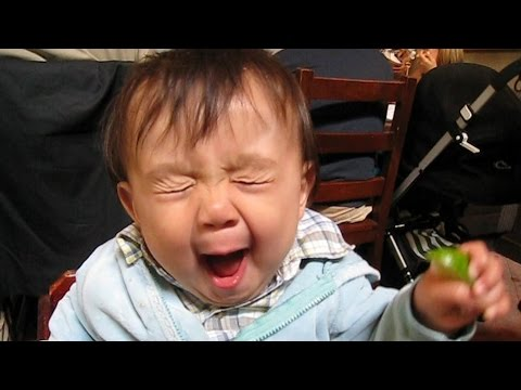 Babies Taste Sour Foods For The First Time