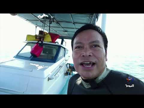 #تايلاند تمد يد العون لقرش الخيزران المهدد بالانقراض