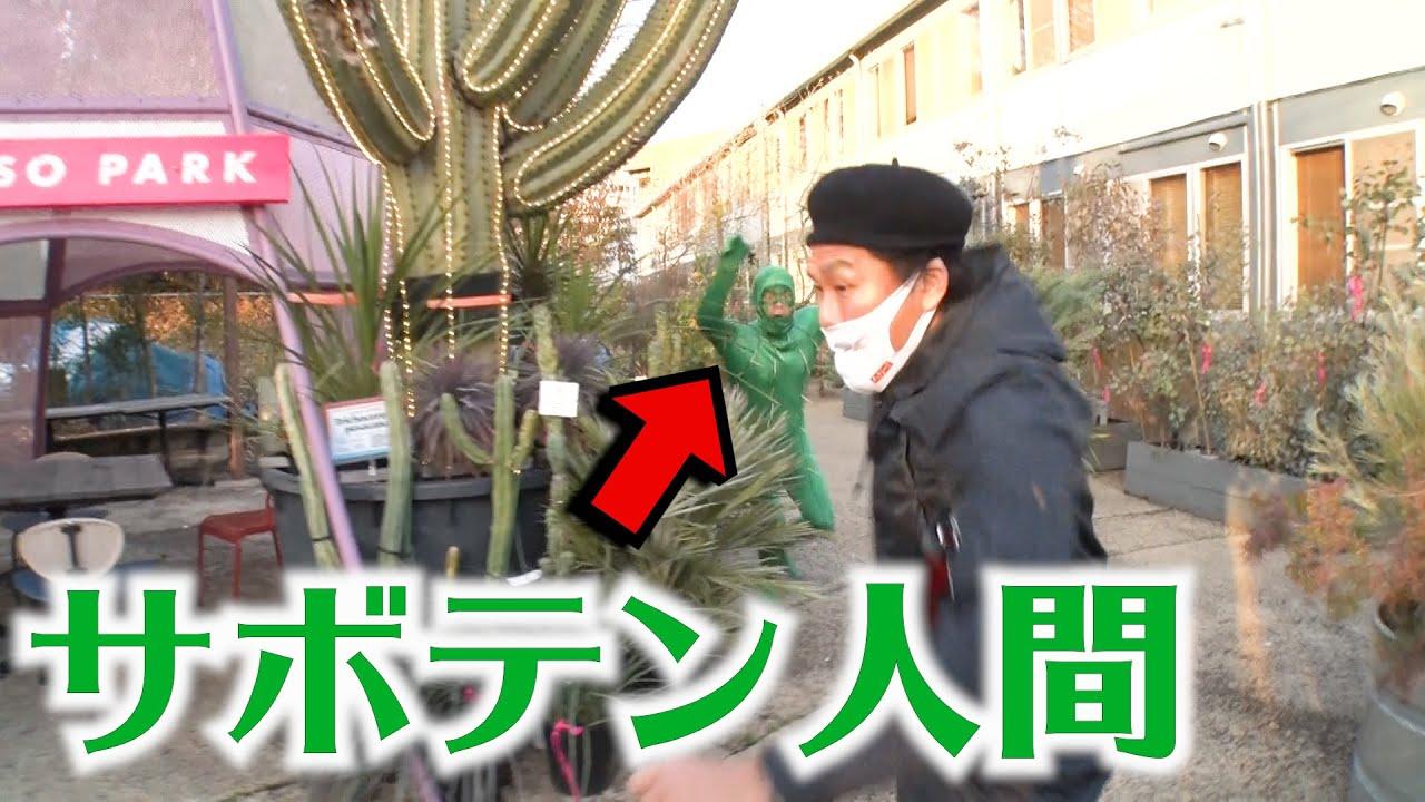 【ドッキリ】恐怖再来!サボテン人間www【SUSHI★BOYSのいたずら#225】