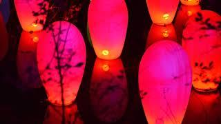 2018 12 10 メッツァビレッジチームラボ森と湖と光の祭