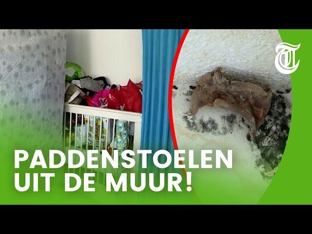 Horror-slaapkamer: 'Mijn kind sliep hier!' - HELSE HUURDERS & HUISBAZEN #02