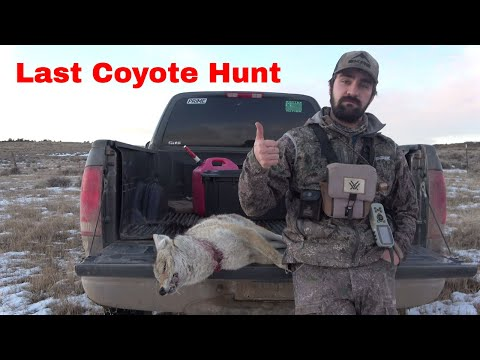 Coyote Hunting Wyoming (The Last Hunt)