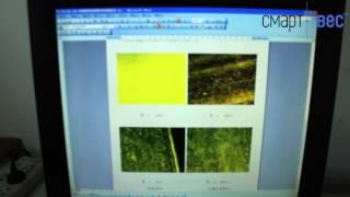 Участок анализа материалов | СмартВес - весы для кранов(, 2014-04-21T14:05:30.000Z)