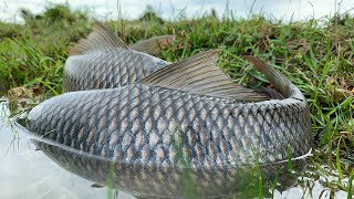 Download Video Beautiful Girl Amazing Fish Trap - How to Catch fish Using The Net at Battambang Province MP3 3GP MP4