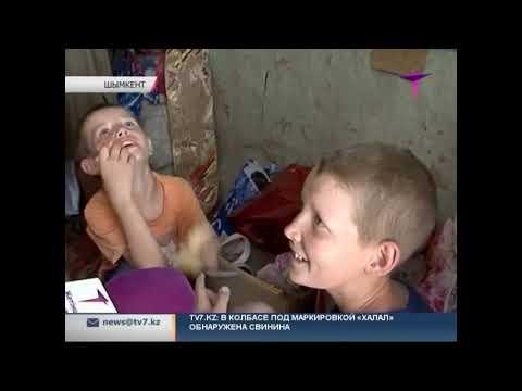 Многодетная мать с детьми живет в крохотной землянке в Шымкенте