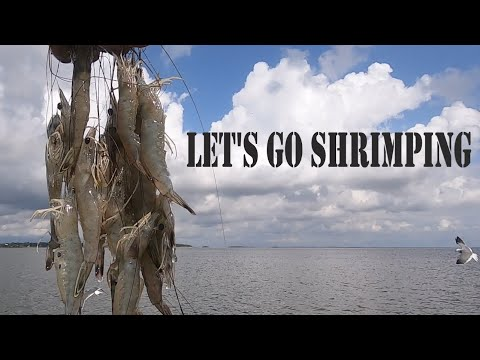 Commercial Shrimp Trawling Off The Coast Of S.C. In A 22' Aluminum G3