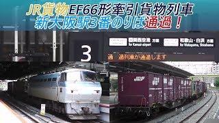 JR貨物EF66形牽引貨物列車 新大阪駅3番のりば通過!