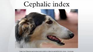 The cephalic index or cranial index is the ratio of the maximum wid...