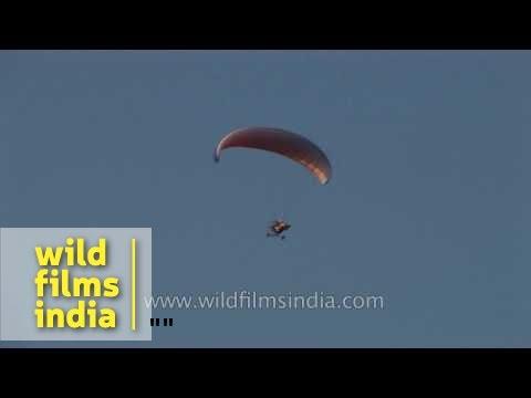 Para-motoring over Arabian sea in Goa