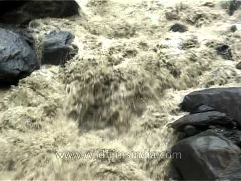 Angry torrent that floods Himalayan valleys