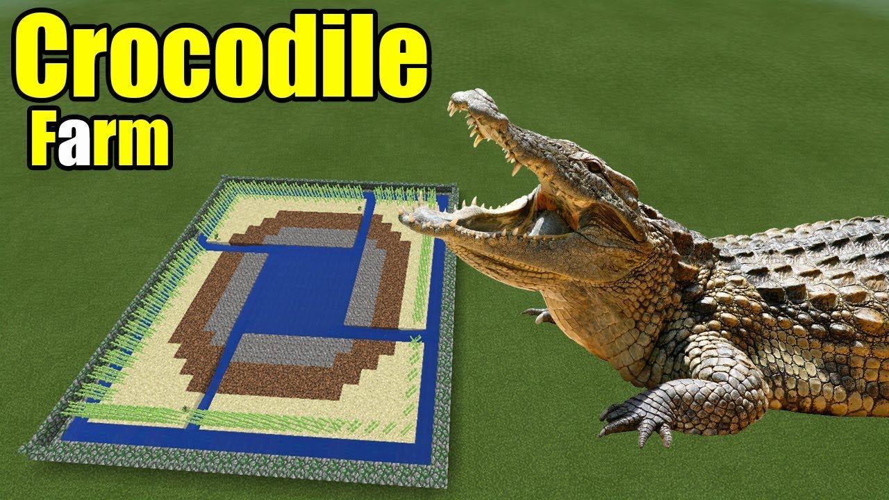 How to Make a Crocodile Farm | Minecraft PE