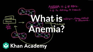 What is anemia?