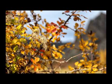 Золотая Осень в Солнечной Долине. Картинки